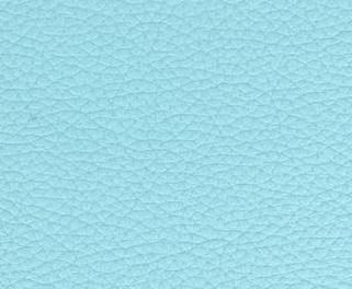 Veau Pleine Fleur - Petit Grain - Bleu Pastel